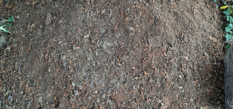 Témoignage autour du compost